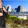 What Jobs can I apply Under a Working Holiday Visa