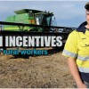 Improve outback employment