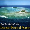 Fast facts about Australia's Great Barrier Reef