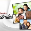 Australian Partner visas – the options