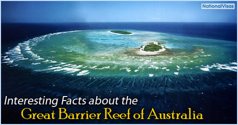 Interesting Facts about Great Barrier Reef of Australia